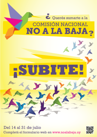 13.07.14 - NALB Campaña SUBITE [baja]