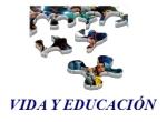 logo vye